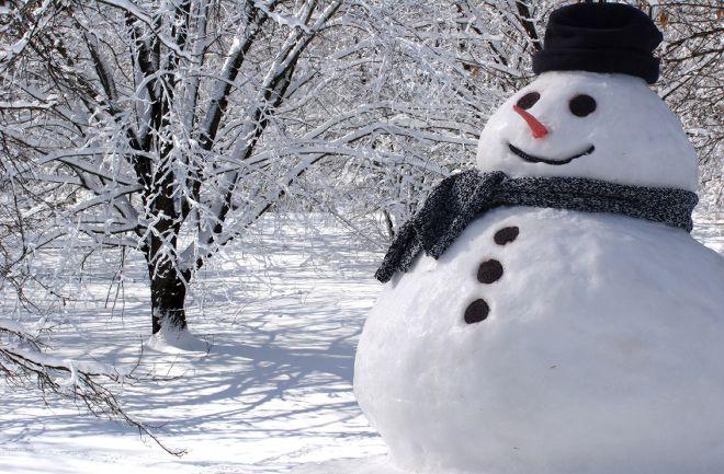 winter-wonderland-picture